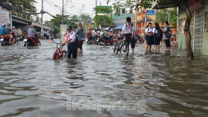Học sinh xắn quần lội nước đến trường ngày đầu tuần vì triều cường gây ngập - ảnh 3