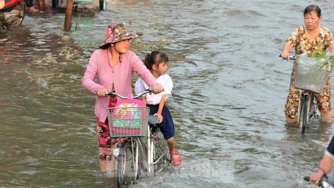Học sinh xắn quần lội nước đến trường ngày đầu tuần vì triều cường gây ngập - ảnh 6