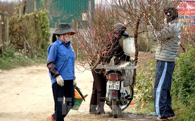 Cúc vàng Nhật Tân 7.000 đồng một bông hối hả xuống phố ngày mồng Một cuối năm - ảnh 9