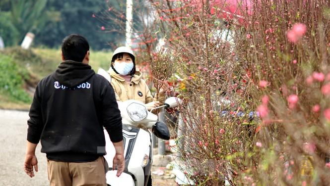 Cúc vàng Nhật Tân 7.000 đồng một bông hối hả xuống phố ngày mồng Một cuối năm - ảnh 12