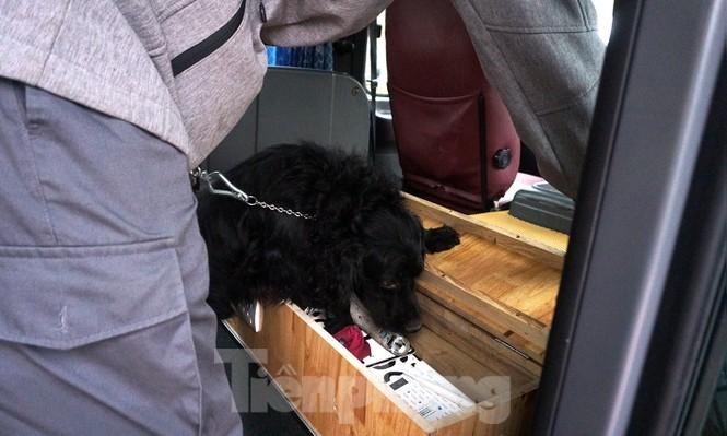 Cảnh khuyển tham gia rà soát xe phục vụ Đại hội - ảnh 5