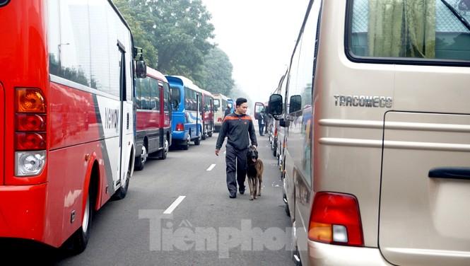 Cảnh khuyển tham gia rà soát xe phục vụ Đại hội - ảnh 6