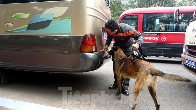 Cảnh khuyển tham gia rà soát xe phục vụ Đại hội - ảnh 10