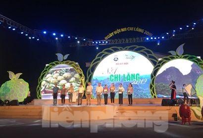 Khai mạc lễ hội na Chi Lăng 2019 - ảnh 3