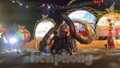 Khai mạc lễ hội na Chi Lăng 2019 - ảnh 1