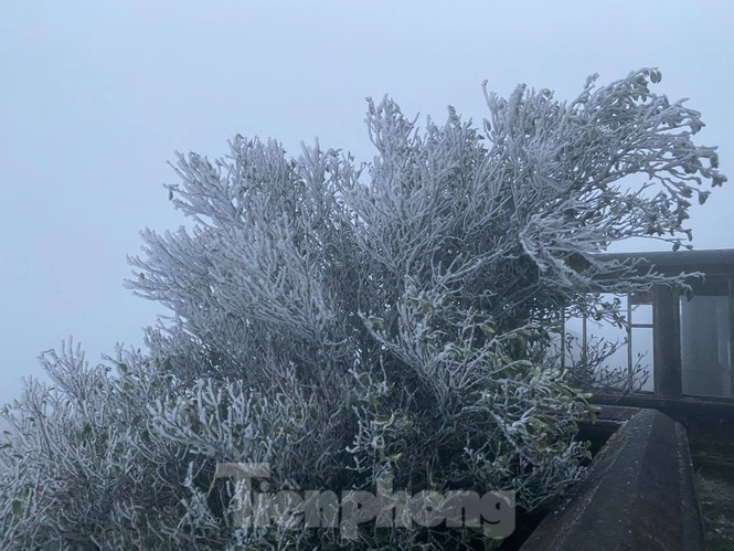 Băng tuyết xuất hiện trên đỉnh Mẫu Sơn  - ảnh 6