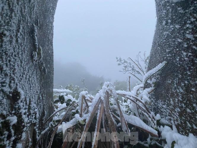 Băng tuyết xuất hiện trên đỉnh Mẫu Sơn  - ảnh 9