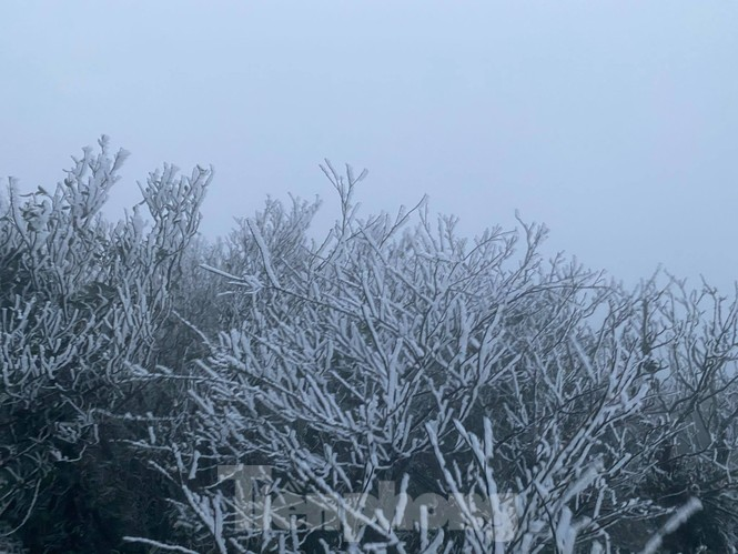 Băng tuyết xuất hiện trên đỉnh Mẫu Sơn  - ảnh 8