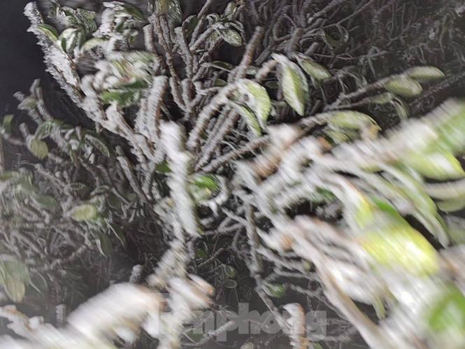 Băng tuyết xuất hiện trên đỉnh Mẫu Sơn  - ảnh 3