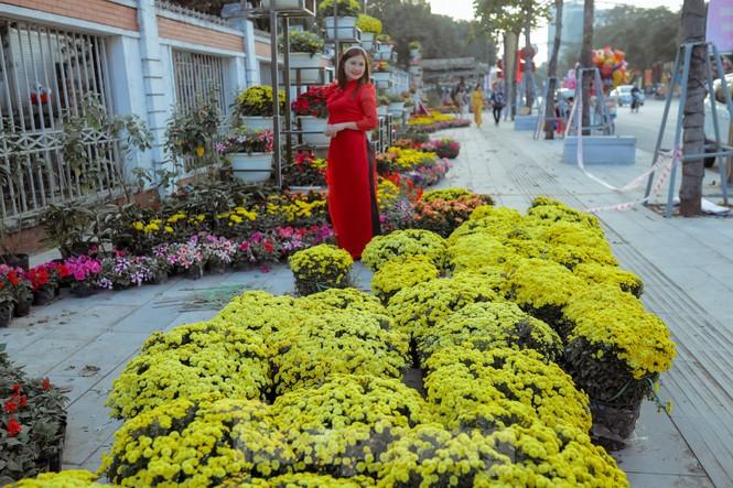 Rực rỡ sắc hoa trên phố đi bộ thành phố Vinh ngày áp tết - ảnh 9