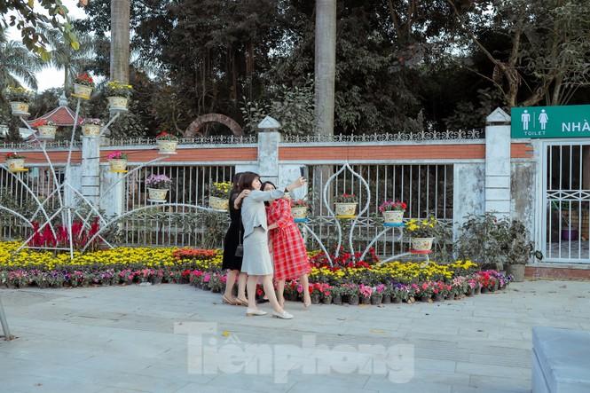 Rực rỡ sắc hoa trên phố đi bộ thành phố Vinh ngày áp tết - ảnh 11