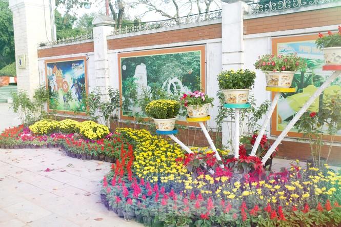 Rực rỡ sắc hoa trên phố đi bộ thành phố Vinh ngày áp tết - ảnh 12