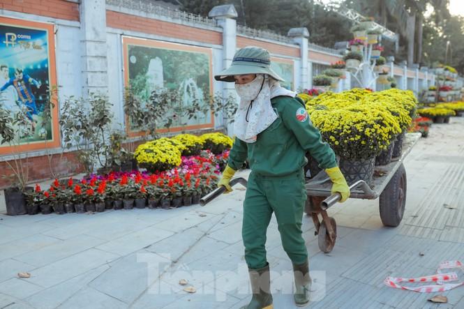 Rực rỡ sắc hoa trên phố đi bộ thành phố Vinh ngày áp tết - ảnh 2
