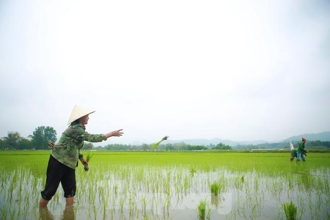 Bà con nông dân rộn ràng xuống đồng ngày đầu năm mới - ảnh 6