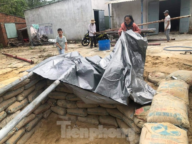 Từ 20 giờ tối nay, Đà Nẵng yêu cầu người dân không ra khỏi nhà để tránh bão số 9 - ảnh 34