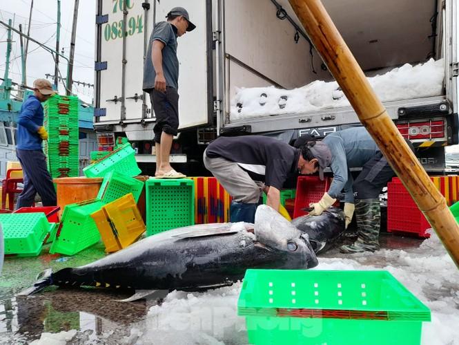 Từ 20 giờ tối nay, Đà Nẵng yêu cầu người dân không ra khỏi nhà để tránh bão số 9 - ảnh 8