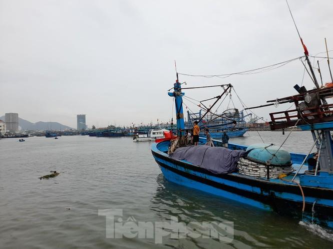 Từ 20 giờ tối nay, Đà Nẵng yêu cầu người dân không ra khỏi nhà để tránh bão số 9 - ảnh 10