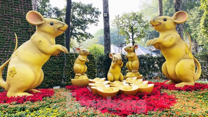 Quất cảnh hình chuột khan hiếm ở chợ hoa Sài Gòn - ảnh 13