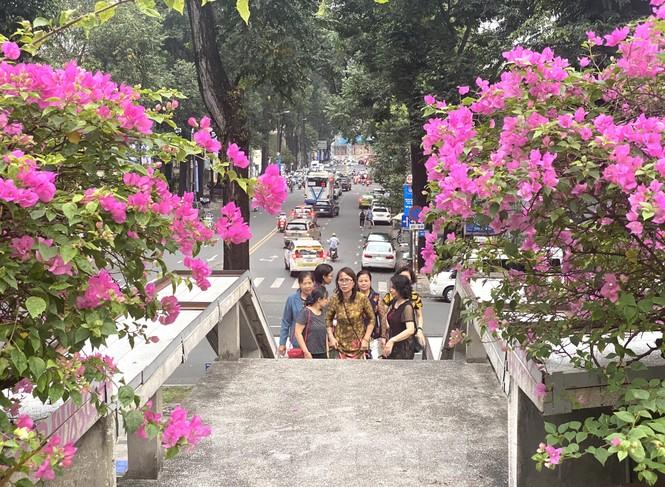 Hồ Con Rùa sắp trở thành phố đi bộ ở TPHCM - ảnh 1