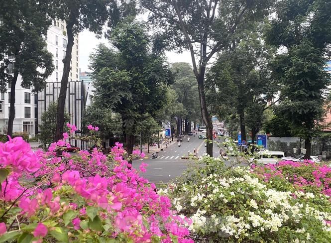 Hồ Con Rùa sắp trở thành phố đi bộ ở TPHCM - ảnh 11
