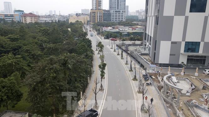 Hàng loạt cây trồng chết khô trên trục đường Cầu Giấy - Dương Đình Nghệ - ảnh 11