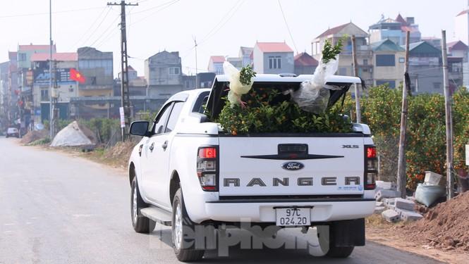 Vựa hoa cây cảnh lớn nhất miền bắc vào vụ Tết - ảnh 11