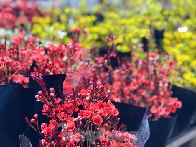 Nhộn nhịp chợ hoa đêm Quảng Bá ngày 30 Tết - ảnh 5