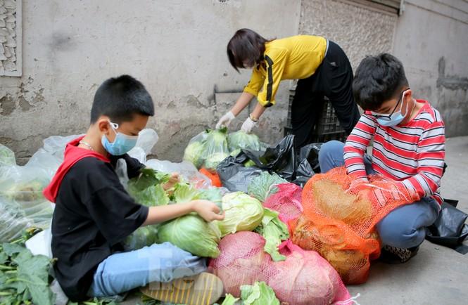 Nhóm tình nguyện giải cứu 30 tấn nông sản từ Hải Dương xuống phố Hà Nội - ảnh 2