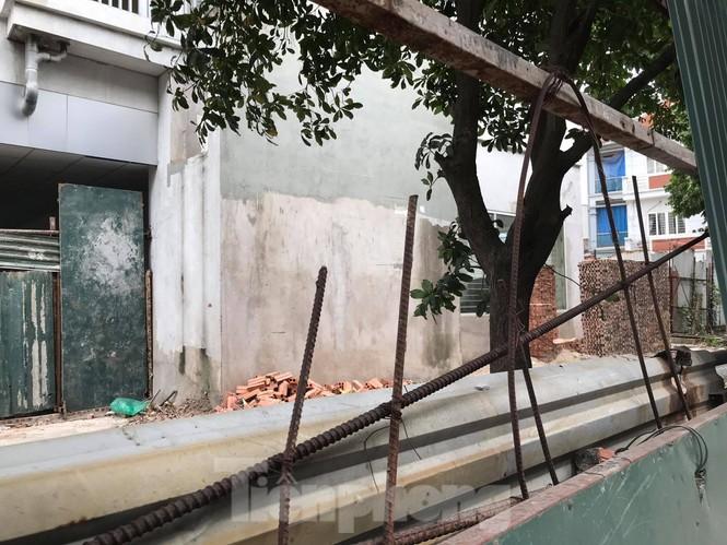 5 tòa chung cư tái định cư nằm trên đất vàng bị 'bỏ hoang' ở Hà Nội - ảnh 4