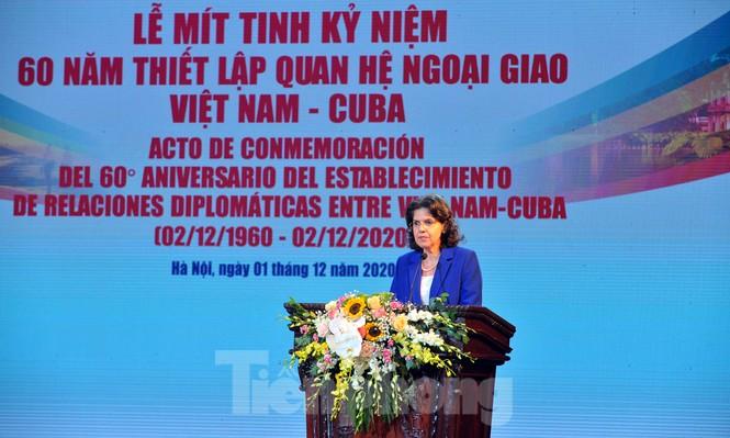 Kỷ niệm 60 năm thiết lập quan hệ ngoại giao Việt Nam - Cuba - ảnh 5