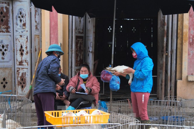 Chợ gia cầm lớn nhất miền Bắc tất bật những ngày cận Tết - ảnh 10