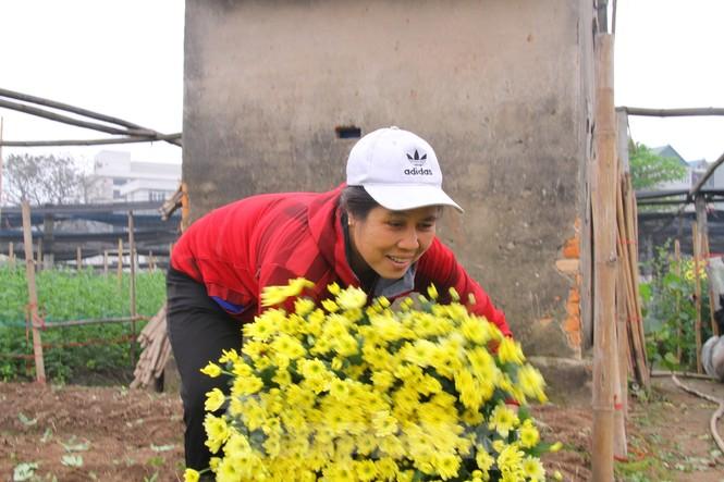 Người dân làng Tây Tựu phấn khởi vì giá hoa 'hồi sinh' - ảnh 8