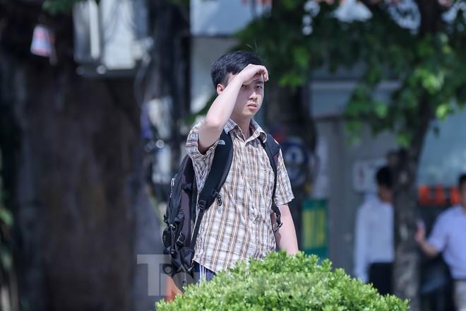 Hà Nội trở lại nắng nóng sau ngày mưa dông - ảnh 8