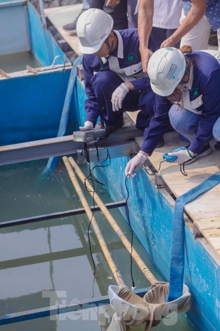 Thả cá Koi Nhật Bản xuống sông Tô Lịch và Hồ Tây - ảnh 3