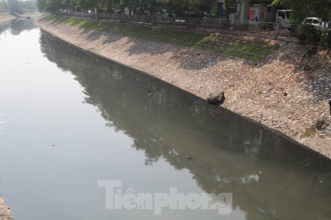 Vì sao bất ngờ tháo dỡ khu thí điểm làm sạch nước sông Tô Lịch? - ảnh 7