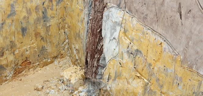 Có gì trong bãi cọc nghìn năm tuổi ở Hải Phòng? - ảnh 4