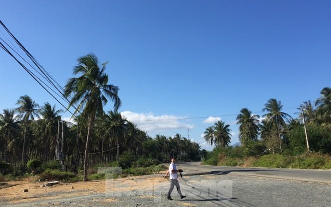 Yến Sào Khánh Hoà được sử dụng hàng trăm hécta đất công không nộp thuế - ảnh 2