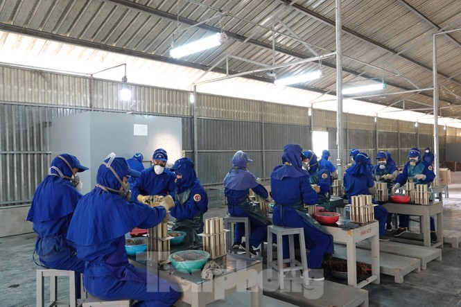 Khám phá nhà máy sản xuất pháo hoa duy nhất được cấp phép tại Việt Nam - ảnh 4