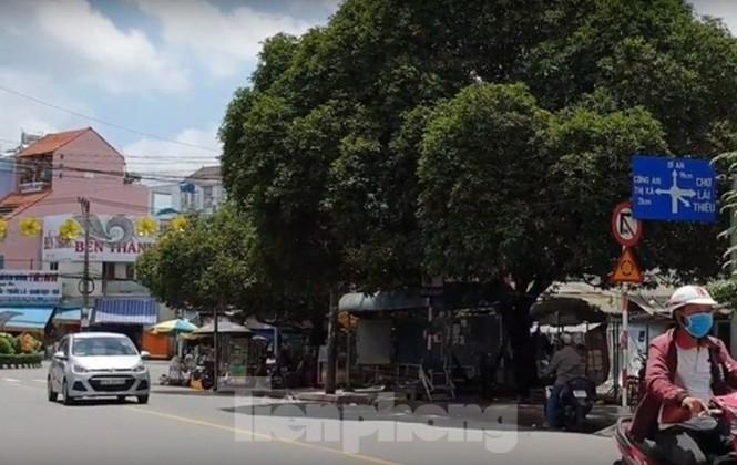 Bình Dương: Ngừng xây trạm ép rác trên đất công viên - ảnh 2