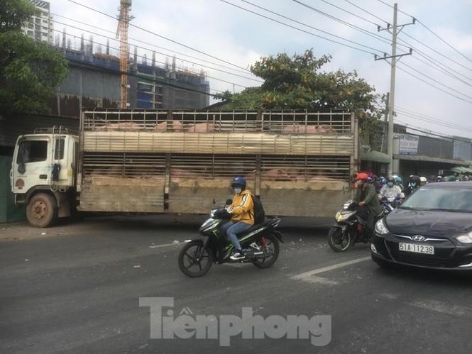 Xe chở 50 con heo tông vào nhà dân khiến quốc lộ 13 kẹt cứng 2km - ảnh 4