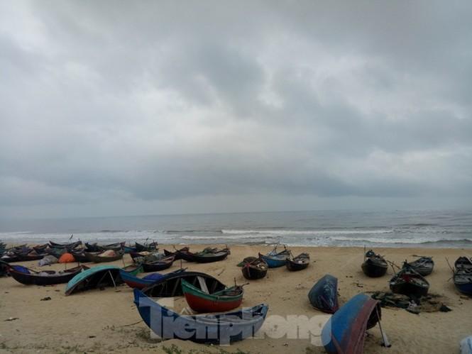 Ngư dân vượt sóng dữ kiếm 'lộc trời' ngày cuối năm - ảnh 9
