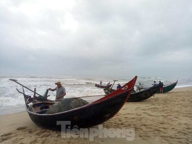 Ngư dân vượt sóng dữ kiếm 'lộc trời' ngày cuối năm - ảnh 2