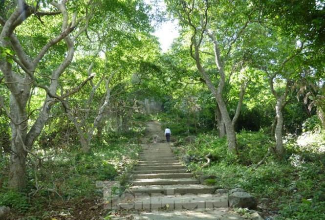 Huyền bí ngôi chùa 'độc nhất vô nhị' ở Bình Dương - ảnh 4