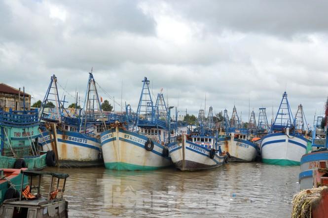 Nhiều tỉnh miền Tây cấm tàu, thuyền ra khơi để phòng tránh bão  - ảnh 1