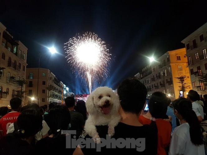 Rực rỡ pháo hoa chào mừng thành lập thành phố Phú Quốc - ảnh 8