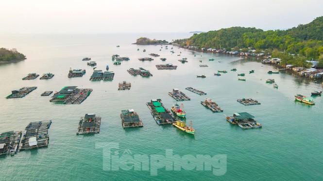 Ngất ngây với với vẻ đẹp xã đảo Tiên Hải  - ảnh 13