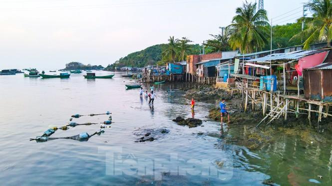 Ngất ngây với với vẻ đẹp xã đảo Tiên Hải  - ảnh 19