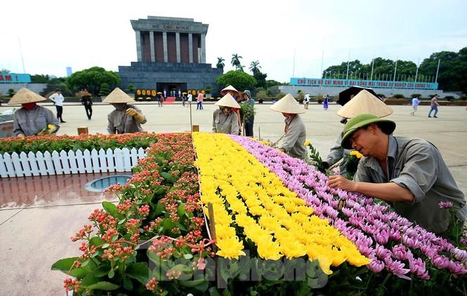 Những người thợ tận tâm dệt những thảm hoa, vườn cảnh quanh Lăng Bác - ảnh 10