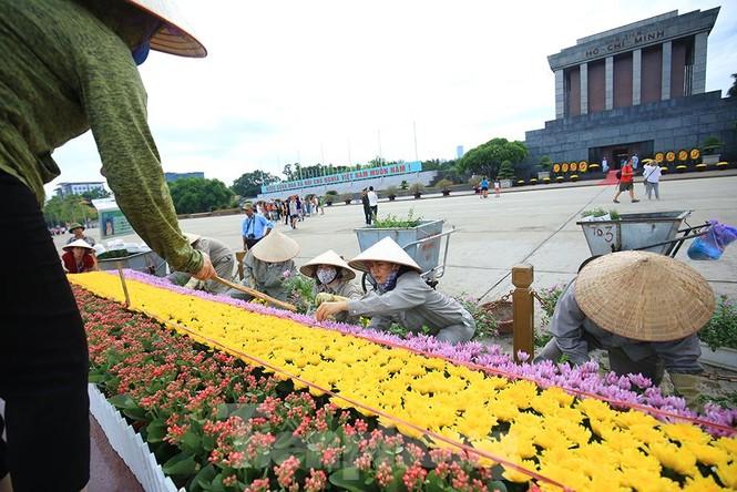 Những người thợ tận tâm dệt những thảm hoa, vườn cảnh quanh Lăng Bác - ảnh 5