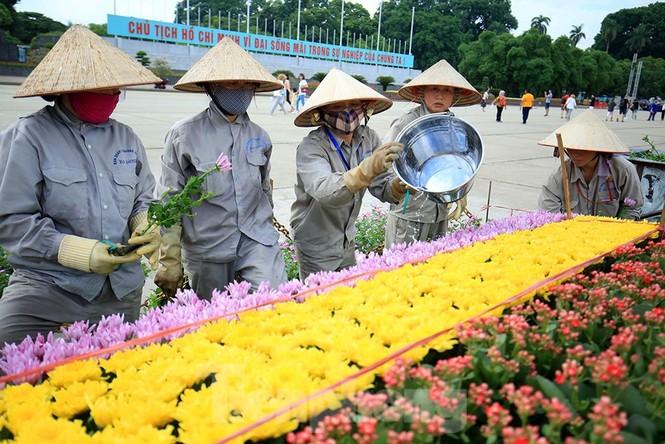 Những người thợ tận tâm dệt những thảm hoa, vườn cảnh quanh Lăng Bác - ảnh 7